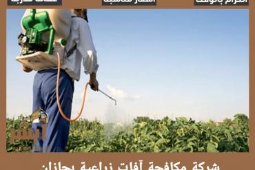 شركة رش مبيدات قبل البلاط بجازان